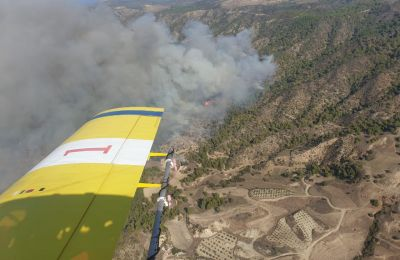 Fire department battling multiple Akamas fires from air and on the ground, officials certain 'living hell' was caused by arson